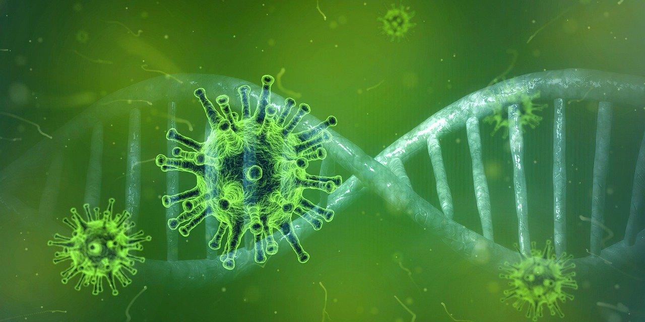 UV Marius Terol - Coronavirus